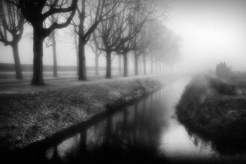 <strong>A Foggy Day</strong>